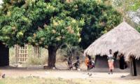 african-village-hut_an-inspiration-for-our-lodge-design.jpg